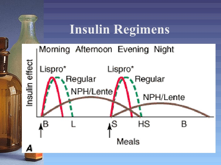 Rejimen insulin